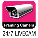 View Framing Camera
