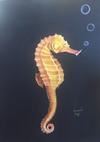 ARMANDO PEREZ - Seahorse